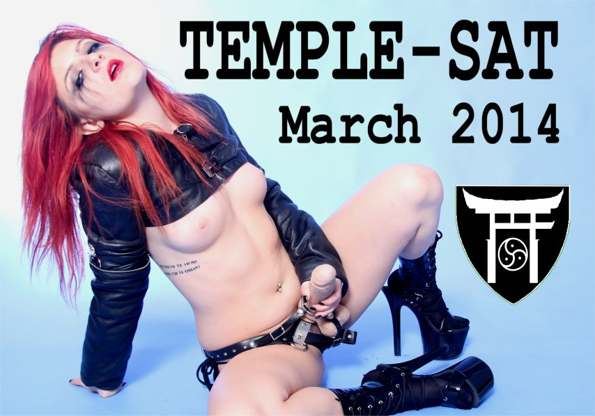 TEMPLE-SAT Flyer March 2014 B